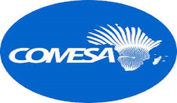 Comesa Summit appoints Ngwenya successor
